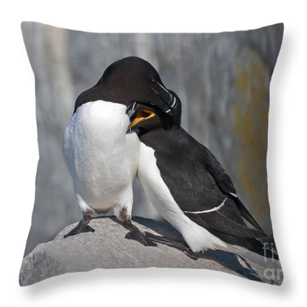 All You Need is Love... Throw Pillow by Nina Stavlund