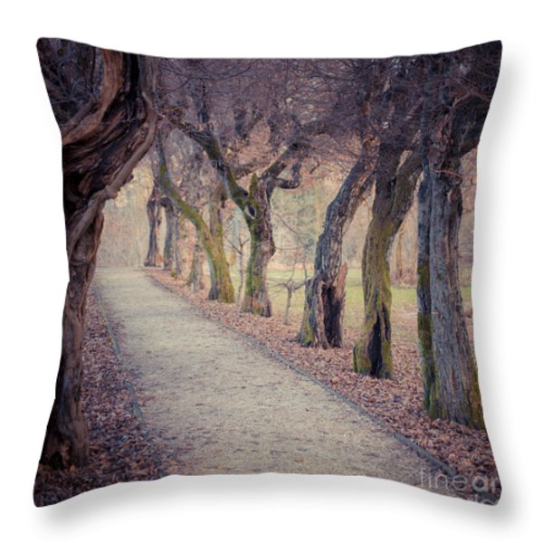 Alley - Square Throw Pillow by Hannes Cmarits