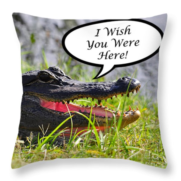 Alligator Greeting Card Throw Pillow by Al Powell Photography USA