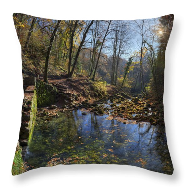 Allondon River Source Throw Pillow by Patrick Jacquet