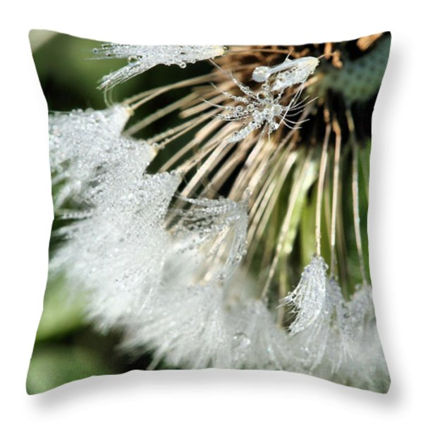 Almost Gone Throw Pillow by JC Findley