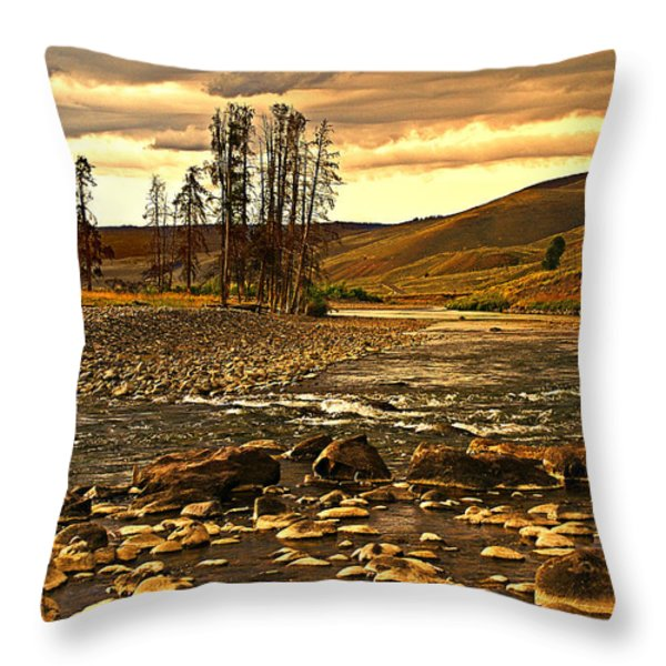 Along The Larmar River Throw Pillow by Marty Koch