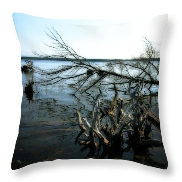 Along The Lost Lake Trail Throw Pillow by Michelle Calkins