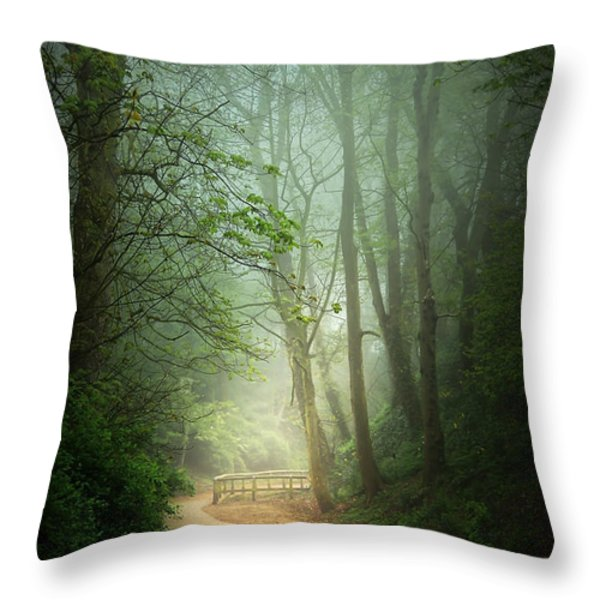 Along The Path Throw Pillow by Svetlana Sewell
