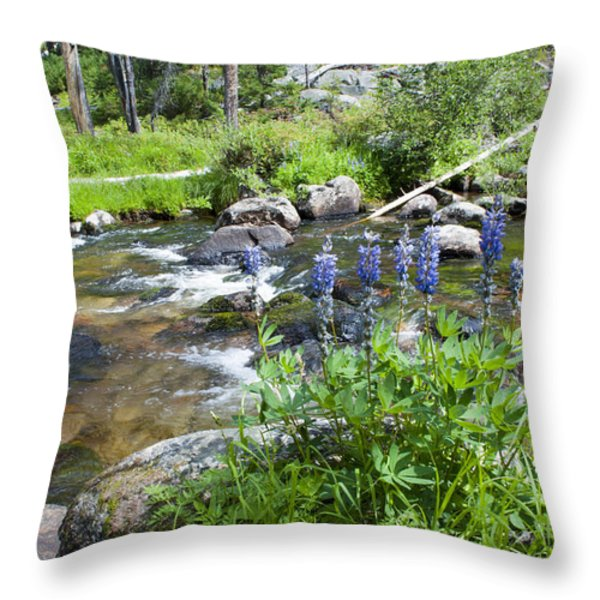 Along The River Throw Pillow by Fran Riley