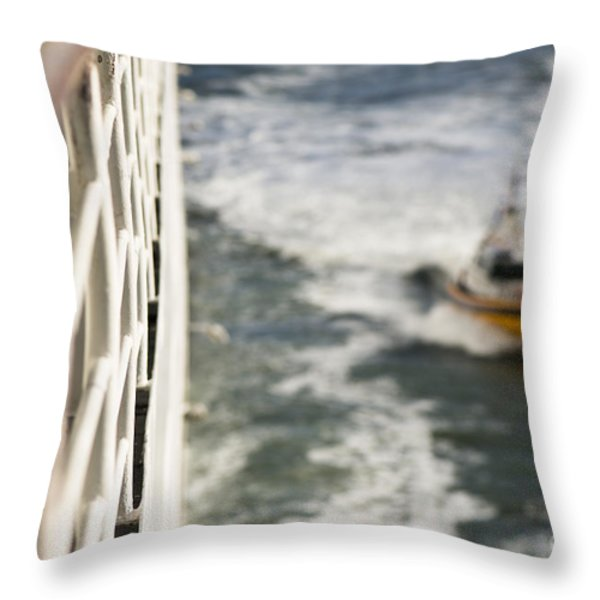 Alongside Throw Pillow by Anne Gilbert