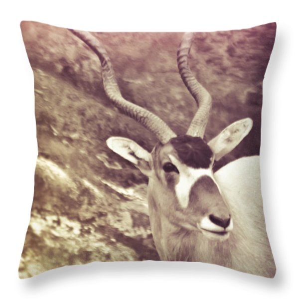 Always In The Way Throw Pillow by Trish Tritz