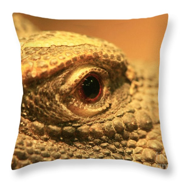 Always Watch Your Back - Benti Uromastyx Lizard Throw Pillow by Inspired Nature Photography By Shelley Myke
