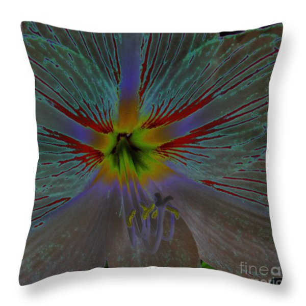 Amaryllis Colors Throw Pillow by D Hackett