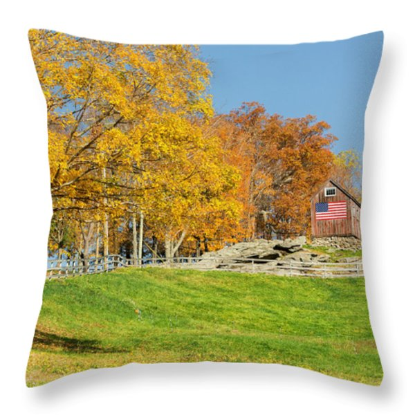 American Autumn Square Throw Pillow by Bill  Wakeley
