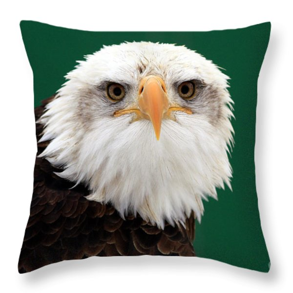 American Bald Eagle on the Look Out Throw Pillow by Inspired Nature Photography By Shelley Myke