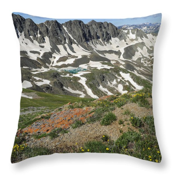 American Basin Throw Pillow by Aaron Spong