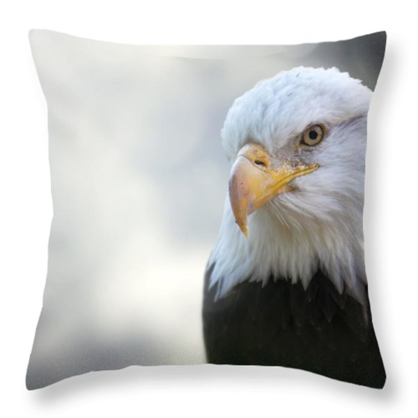 American Eagle Throw Pillow by Jason Politte
