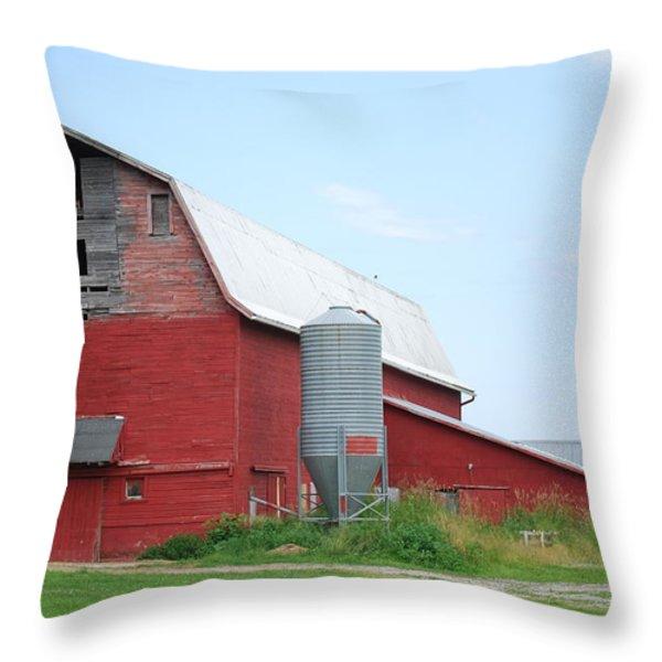 America's Past Throw Pillow by Caroline Stella