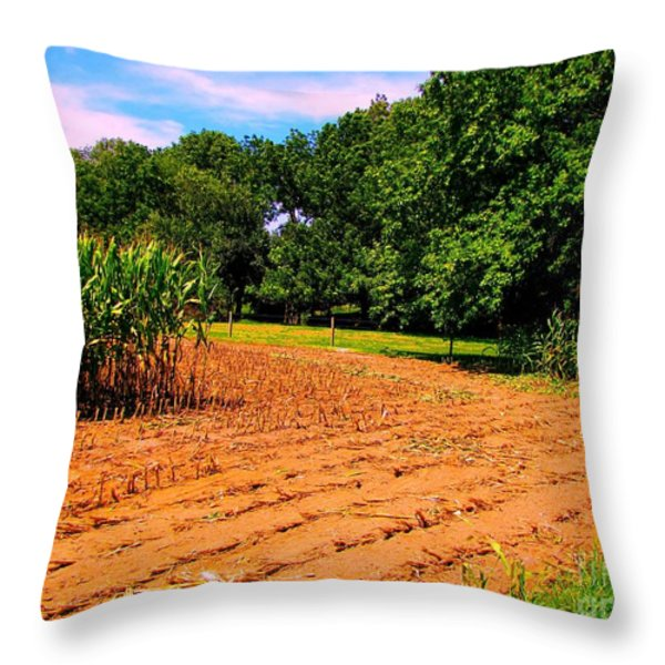 Amish Corn Field Throw Pillow by Annie Zeno