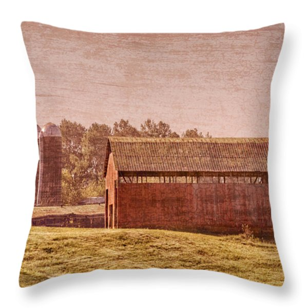 Amish Farm Throw Pillow by Debra and Dave Vanderlaan