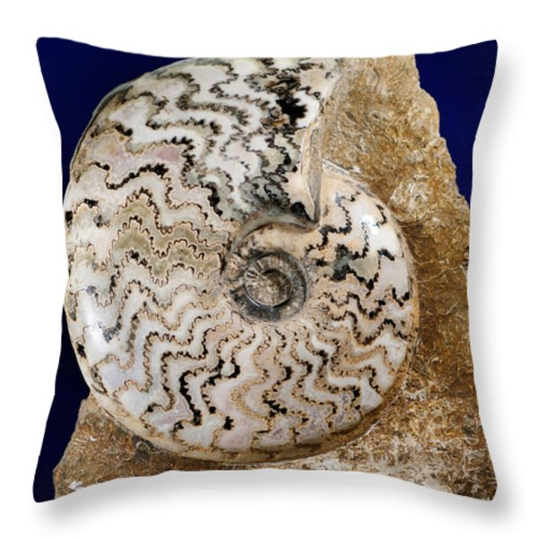 Ammonite Fossil Throw Pillow by Scott Camazine