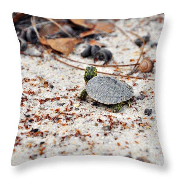 Among Acorns Throw Pillow by Al Powell Photography USA