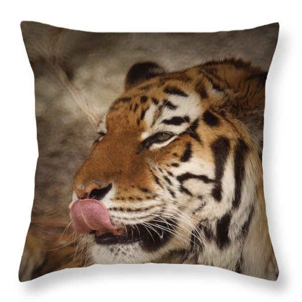 Amur Tiger 3 Throw Pillow by Ernie Echols