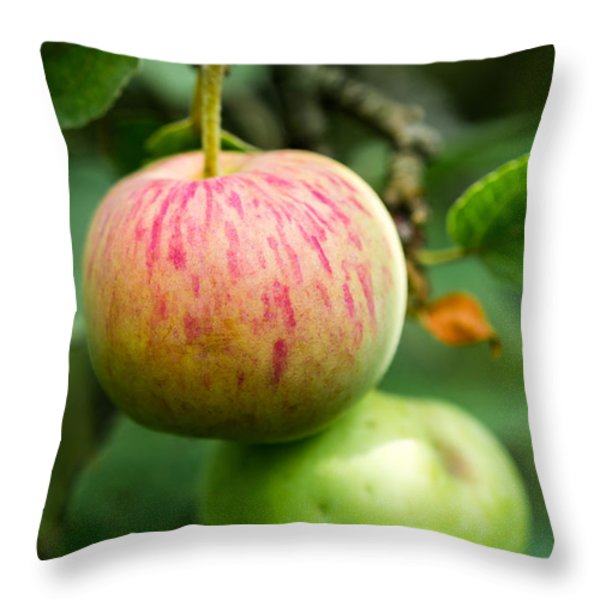 An Apple - Featured 3 Throw Pillow by Alexander Senin