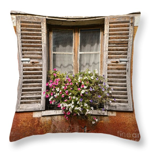 An Old French Window Throw Pillow by Olivier Le Queinec