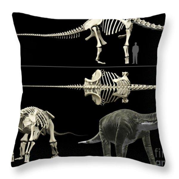 Anatomy Of A Titanosaur Throw Pillow by Rodolfo Nogueira