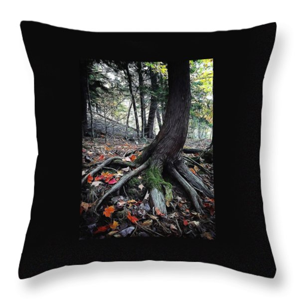 Ancient Root Throw Pillow by Natasha Marco