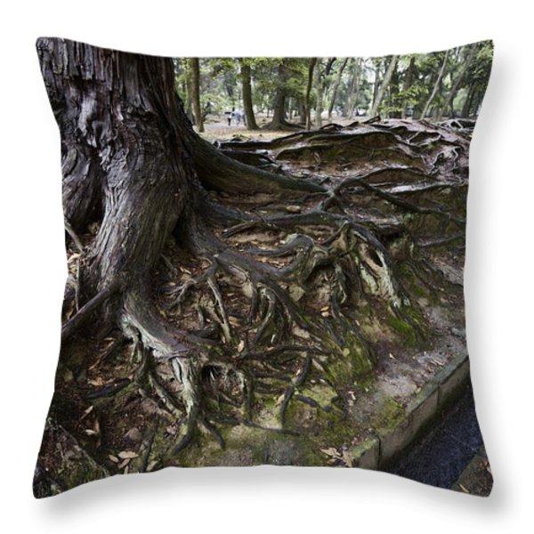 ANCIENT TREES of NARA PARK Throw Pillow by Daniel Hagerman