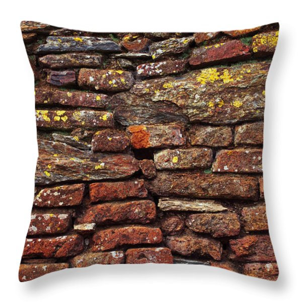 Ancient Wall Throw Pillow by Carlos Caetano