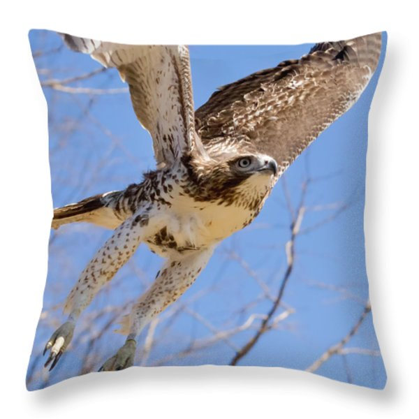 And Away I Go Square Throw Pillow by Bill Wakeley