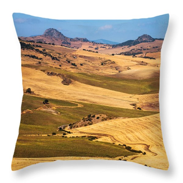 Andalusian Patchwork Fields I. Spain Throw Pillow by Jenny Rainbow