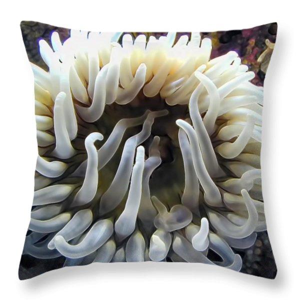 Anenome 1 Throw Pillow by Dawn Eshelman