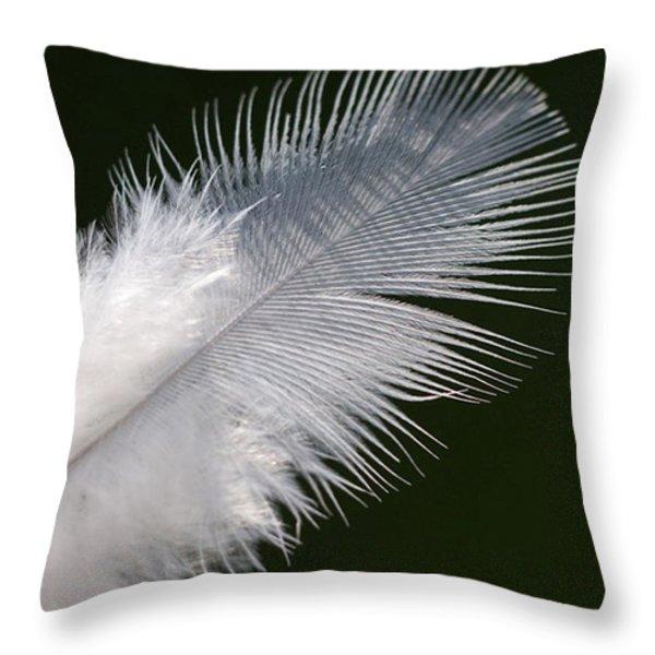 Angel feather Throw Pillow by Carol Lynch