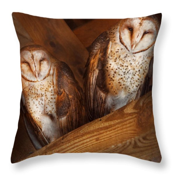 Animal - Bird - A couple of barn owls Throw Pillow by Mike Savad