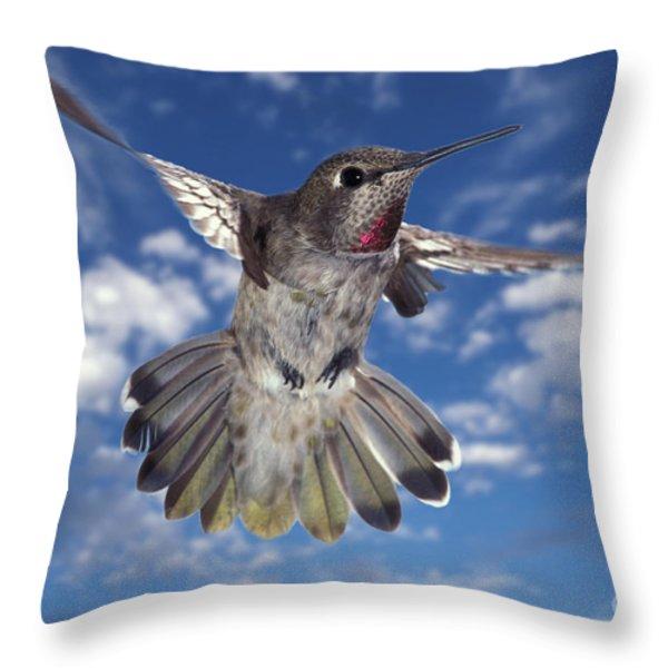Annas Hummingbird Throw Pillow by Ron Sanford