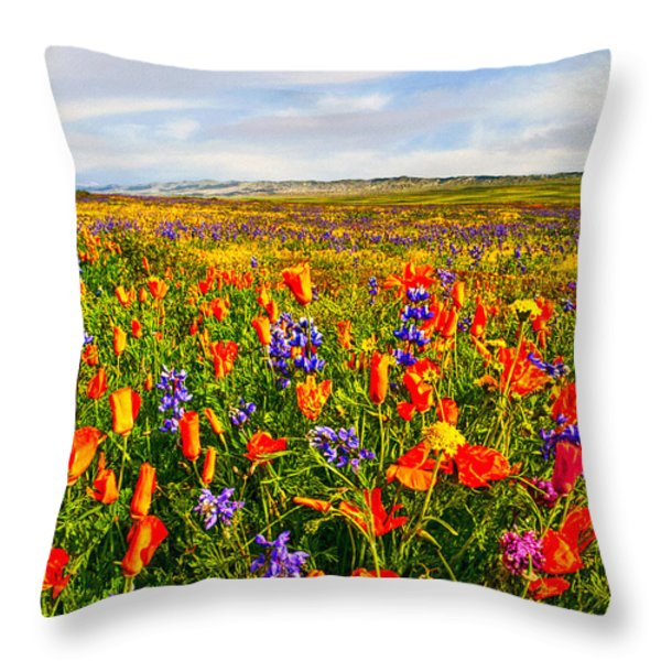 Antelope Valley California Poppy Reserve Throw Pillow by  Bob and Nadine Johnston