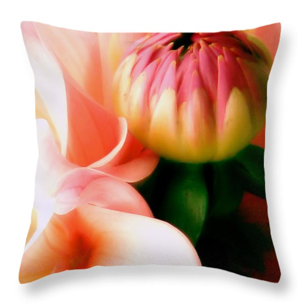 Anticipation Throw Pillow by Rory Sagner