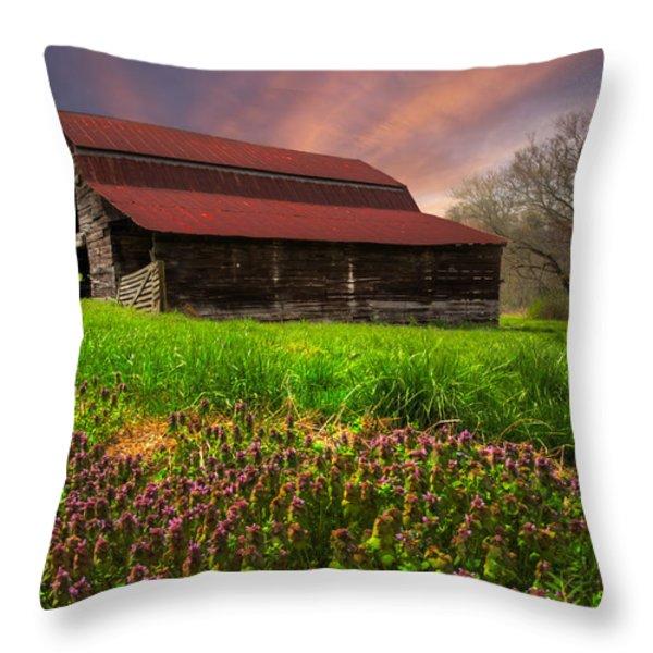 Appalachian Spring Throw Pillow by Debra and Dave Vanderlaan