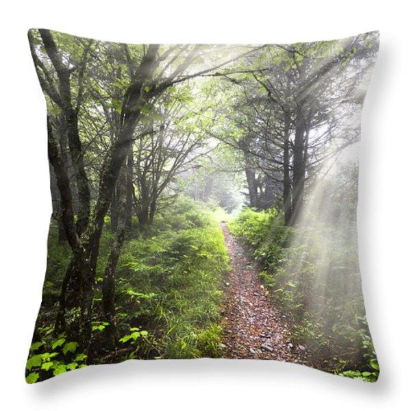 Appalachian Trail Throw Pillow by Debra and Dave Vanderlaan