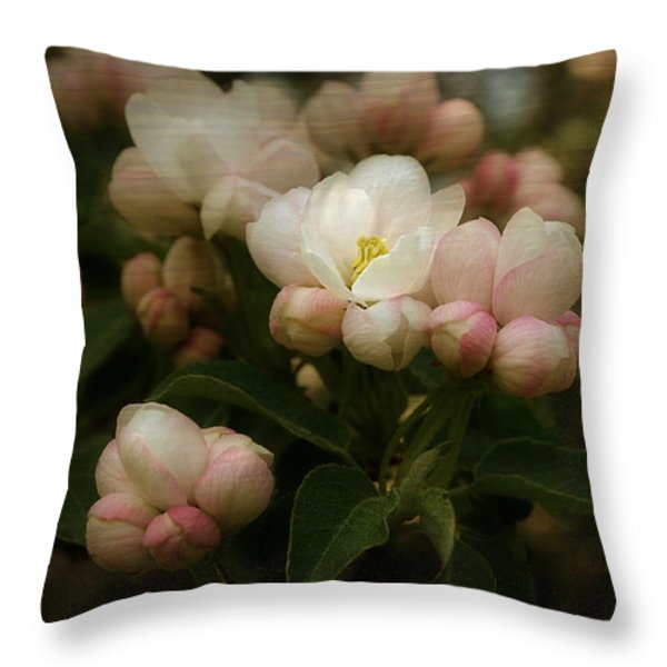 Apple Blossom Time Throw Pillow by Mary Machare