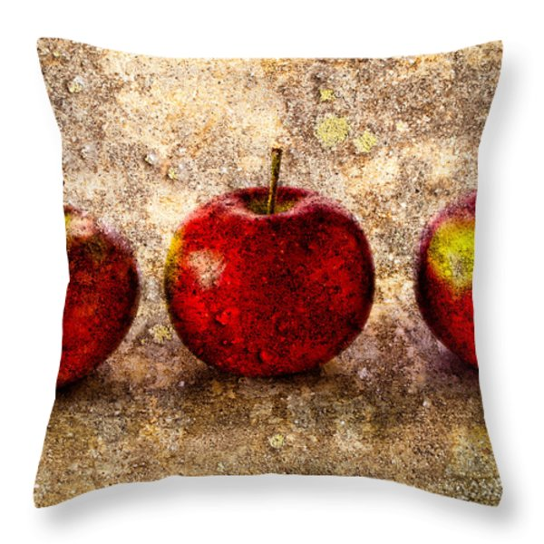 Apple Throw Pillow by Bob Orsillo