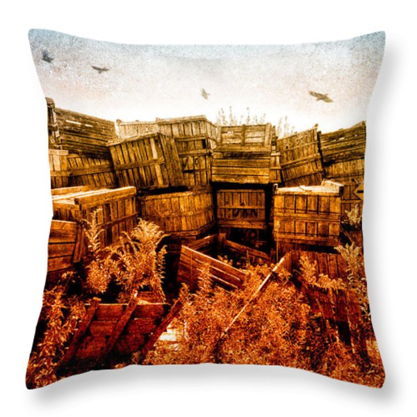 Apple Crates and Crows Throw Pillow by Bob Orsillo