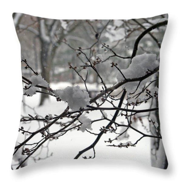 April Snow Throw Pillow by Kay Novy