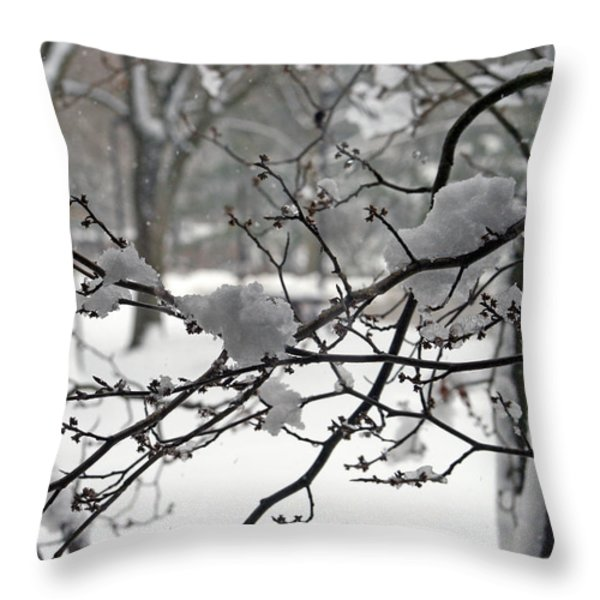 April Snow Throw Pillow by Kay Novy