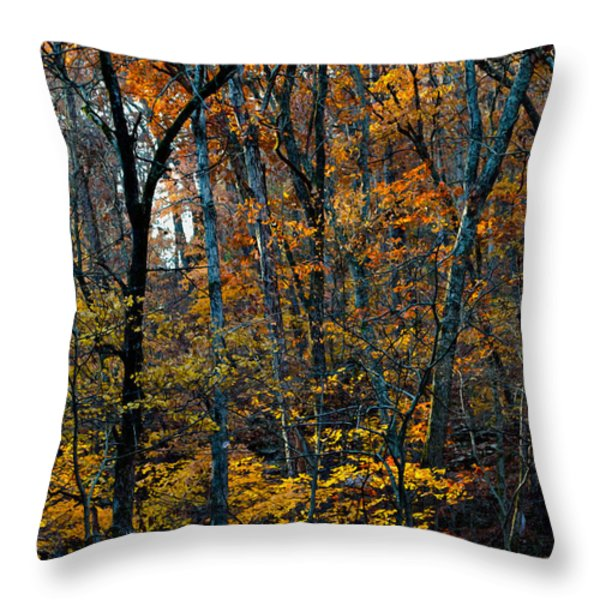AR Fall 12-005FP Throw Pillow by Scott McAllister