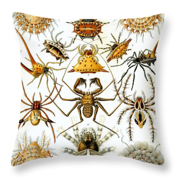 Arachnida Throw Pillow by Nomad Art And  Design