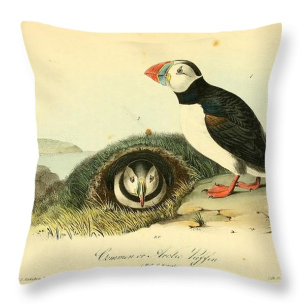 Arctic Puffin Throw Pillow by Philip Ralley