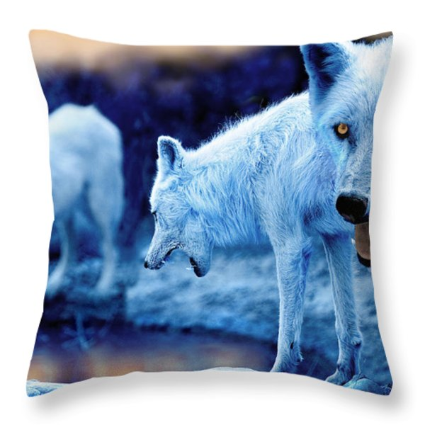 Arctic White Wolves Throw Pillow by Mal Bray