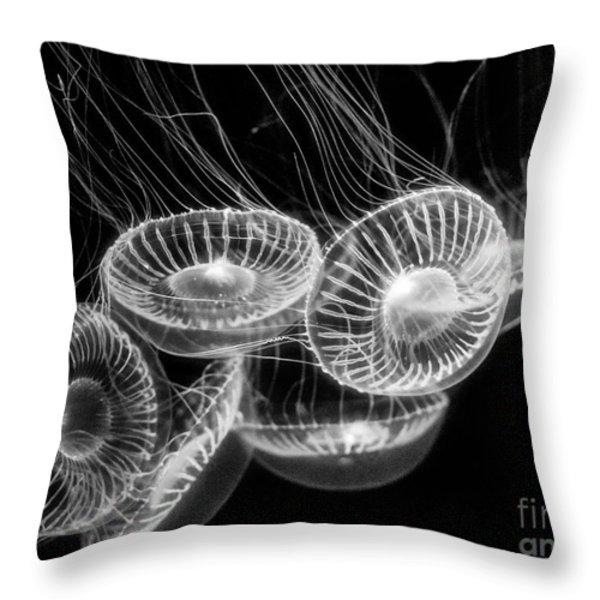 Area 51 - Moon Jellies Aurelia Labiata Throw Pillow by Jamie Pham