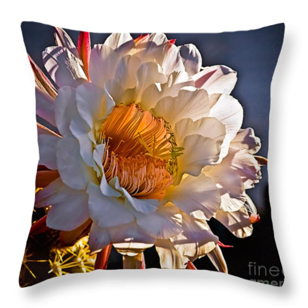 Argentine Giant II Throw Pillow by Robert Bales